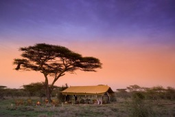 Private Guided Safaris